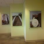 Interior Glazing at Shell Canada