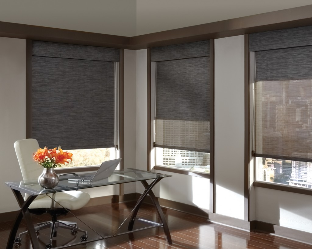 Hunter Douglas Designer Screen Shade