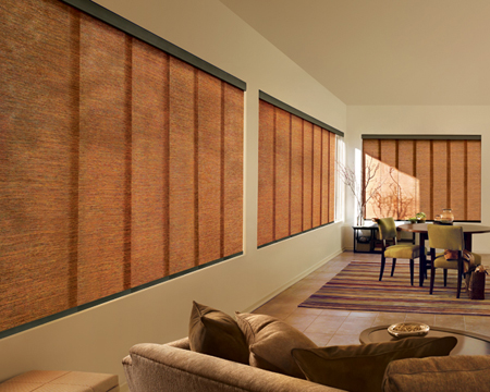 Hunter Douglas Skyline Gliding Panel
